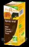 PROROYAL SPRAY A LA PROPOLIS BIO, spray 15 ml à Agen