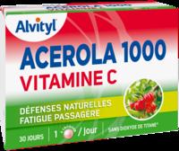 Govital Acerola 1000 à Agen