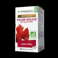 Arkogélules Vigne Rouge Bio Gélules Fl/45 à Agen