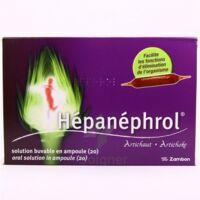 HEPANEPHROL, solution buvable en ampoule à Agen