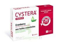 Cystera Premium, Bt 10 à Agen