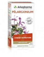 Arkogélules Pélargonium Gélules Fl/45 à Agen