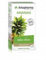 Arkogélules Ananas Gélules Fl/45 à Agen