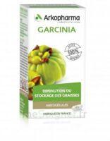 Arkogélules Garcinia Gélules Fl/45 à Agen