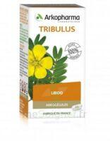 Arkogélules Tribulus Gélules Fl/45 à Agen