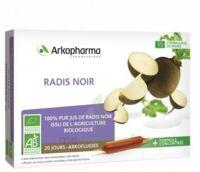Arkofluide Bio Ultraextract Radis Noir Solution Buvable 20 Ampoules/10ml à Agen