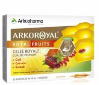 Arkoroyal Royal'fruits Gelée Royale Goji Grenade Baobab Solution Buvable 20 Ampoules/10ml à Agen