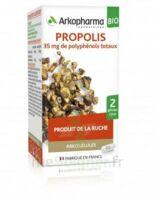 Arkogélules Propolis Bio Gélules Fl/45 à Agen