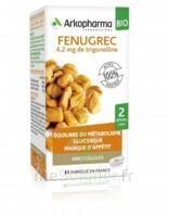 Arkogélules Fenugrec Bio Gélules Fl/40 à Agen