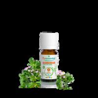 Puressentiel Huiles Essentielles - Hebbd Thym à Thujanol Bio* - 5ml à Agen