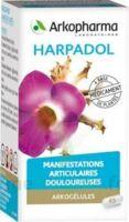 ARKOGELULES HARPAGOPHYTON, 150 gélules à Agen