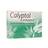 CALYPTOL INHALANT, émulsion pour inhalation par fumigation à Agen