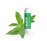 PURESSENTIEL RESPIRATOIRE Inhalation nasal 19 huiles essentielles à Agen
