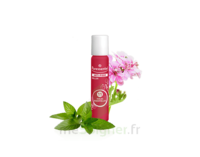 PURESSENTIEL ANTI-PIQUE Roller 11 huiles essentielles à Agen