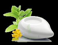 PURESSENTIEL DIFFUSION Diffuseur à chaleur douce céramique blanc à Agen