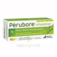 PERUBORE Caps inhalation par vapeur inhalation Plq/15 à Agen
