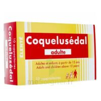 COQUELUSEDAL ADULTES, suppositoire à Agen