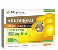 Arkoroyal Gelée royale bio 1500 mg Solution buvable 20 Ampoules/10ml à Agen