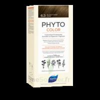 Phytocolor Kit Coloration Permanente 6.3 Blond Foncé Doré à Agen