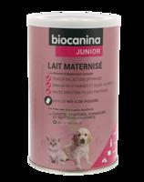 Biocanina Lait Poudre Maternisé B/400g à Agen