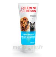 Clément Thékan Shampooing Peaux Sensibles T/200ml à Agen