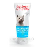 Clément Thékan Shampooing Poils Blancs T/200ml à Agen
