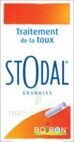 Boiron Stodal Granules Tubes/2 à Agen