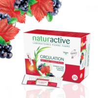 Naturactive Phytothérapie Fluides Solution buvable Circulation 2B/20 Sticks/10ml à Agen