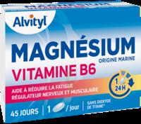Govital Magnésium Vitamine B6 Comprimés B/45 à Agen