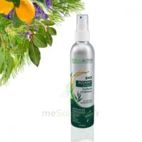 Naturactive Assaini'spray 200ml à Agen