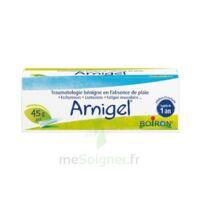 Boiron Arnigel Gel T(alumino-plastique)/45g à Agen