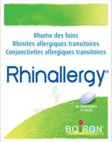 Boiron Rhinallergy Comprimés B/40 à Agen