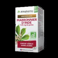 Arkogélules Marronnier D'inde Bio Gélules Fl/45 à Agen