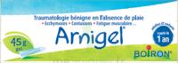 Boiron Arnigel Gel T/45g à Agen
